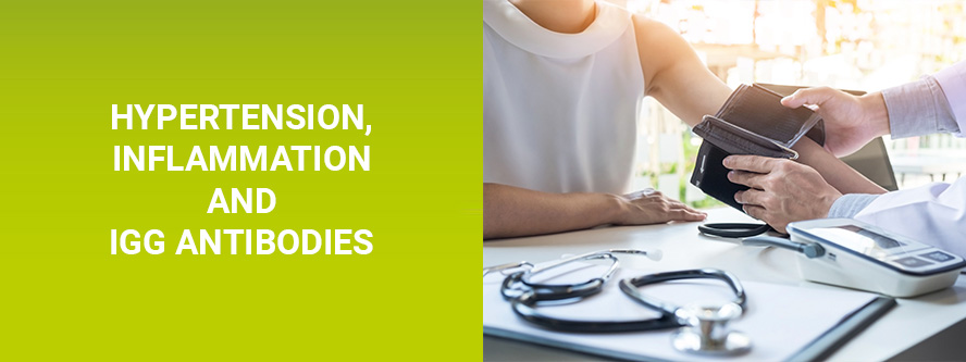 Hypertension, inflammation and IgG antibodies